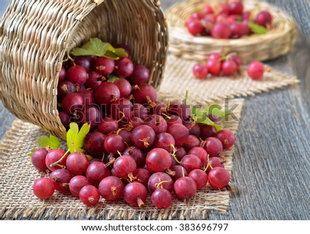 Red gooseberries in wicker basket on wooden table - stock photo