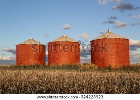 red grain bins in the evening sun - stock photo