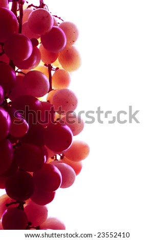 Red grape in high light mode - stock photo
