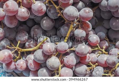 Red grape (Vitis vinifera) fruits, healthy vegetarian food - stock photo