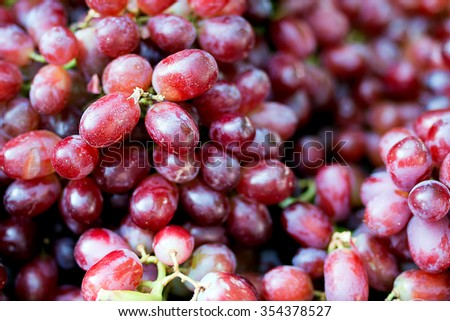 Red Grape , Vitis vinifera L. , VITACEAE , Cardinal Grape , Emperor Grape - stock photo