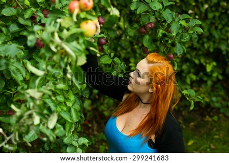 Red hair girl in pin-up style picking an apple - stock photo