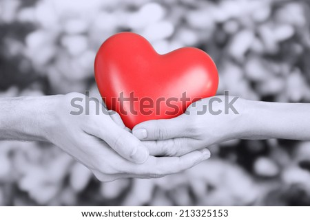 Red heart in hands on grey background - stock photo