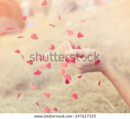 Red heart in woman hands. - stock photo