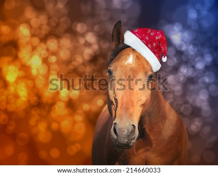 red horse in  Santa hat on Christmas background with bokeh  - stock photo