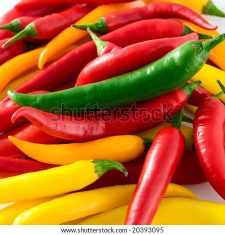 Red hot chili pepper - stock photo