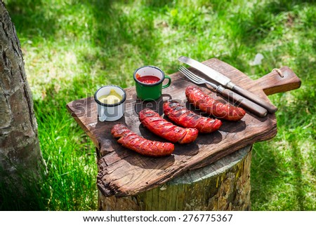 Red hot sausages with spices and rosemary in garden - stock photo