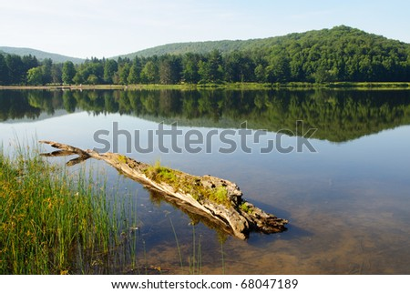 Red House Lake, trees and hills - stock photo