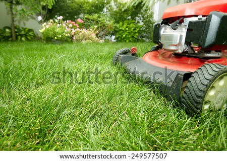 Red Lawn mower cutting grass. Gardening concept background - stock photo