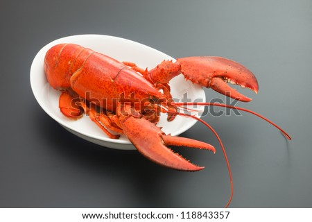 Red Lobster on black background - stock photo