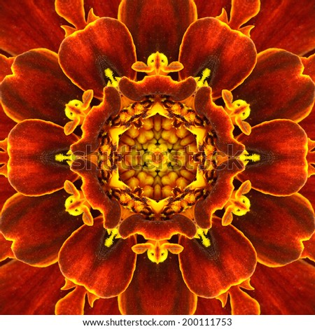 Red Mandala Concentric Flower Kaleidoscope with Yellow Center. Kaleidoscopic Design Pattern - stock photo