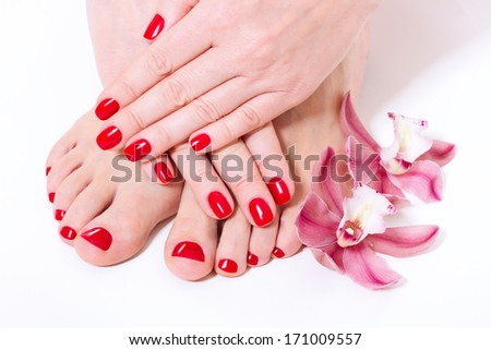 red manicure and pedicure design with beautiful flowers , orchids close up - stock photo