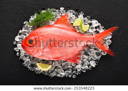 Red palometa fish on ice on a black stone table top view - stock photo