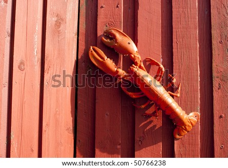 Red plastic lobster on red timber wall. - stock photo