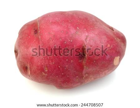 Red potato in closeup  - stock photo