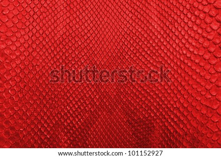 Red python snake skin texture background. - stock photo