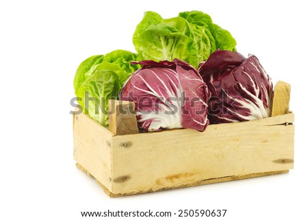 "red ""radicchio"" lettuce and green ""little gem""lettuce in a wooden box on a white background - stock photo"