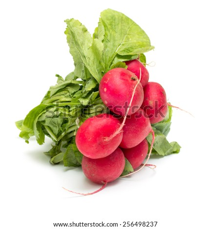 red radish with green leaves on a white background - stock photo
