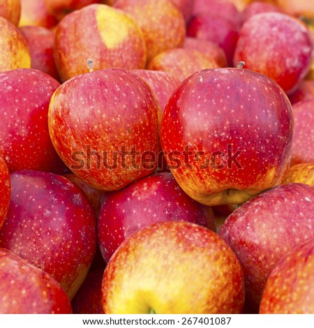 Red ripe and yellow apple background  - stock photo