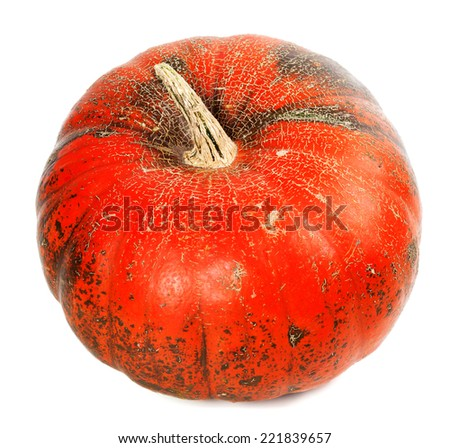 Red ripe pumpkin isolated on white background - stock photo