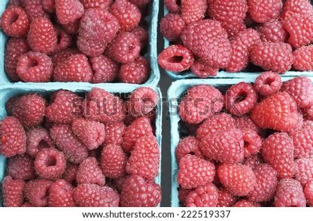 Red Ripe Raspberries - stock photo