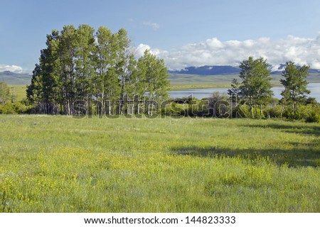 Red Rock Lake in Centennial Valley near Lakeview, MT - stock photo