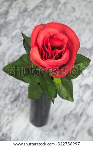 Red rose in black vase on the marble table, still life, art, decoration - stock photo
