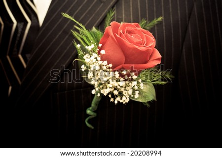 red rose lapel on a dark suit - stock photo