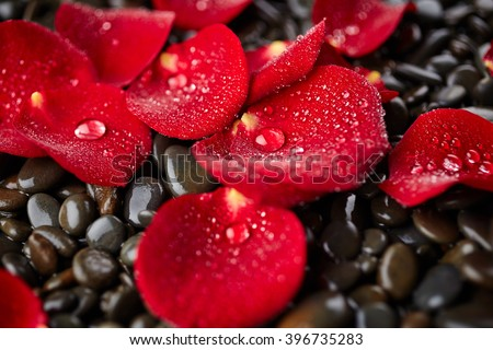 Red rose petals with drops of water on stones background - stock photo