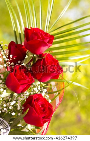 Red roses flower, nature , spring flower , amazing flowers,beautiful roses,roses on green,roses petals,fresh red petals,roses in garden,amazing roses,flowers for wedding,beautiful roses,closeup roses - stock photo