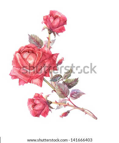 Red Roses Garland - stock photo