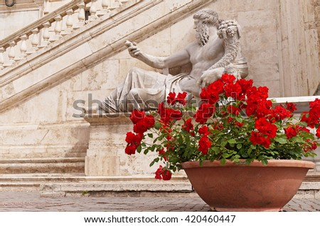 Red Roses in a Terracotta Pot Placed Next to the Statue of Nile God at Piazza del Campidoglio in Rome - stock photo