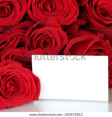 Red roses on Valentine's or mothers day with copyspace for your own text - stock photo