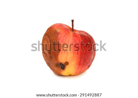 Red rotten apple. Natural color and texture - stock photo