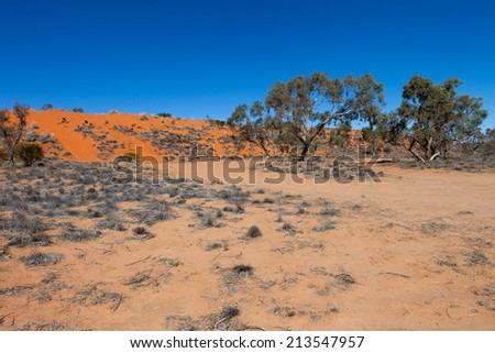 Red sand dune in the South Australian outback. - stock photo