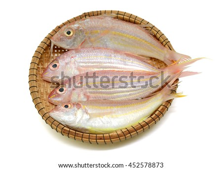red snapper fish in basket isolated on white background - stock photo