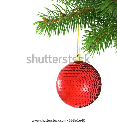 Red spangled Christmas bauble hanging on a green spruce branch isolated on white - stock photo