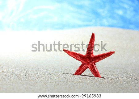 Red starfish in the sand on the beach - stock photo