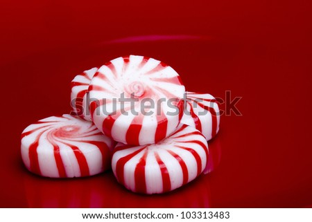 Red striped peppermints on a red background. - stock photo