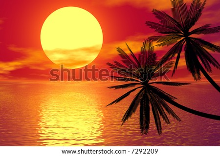 red sunset and palm - stock photo