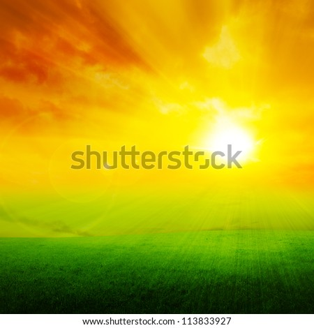 Red sunset on green field - stock photo