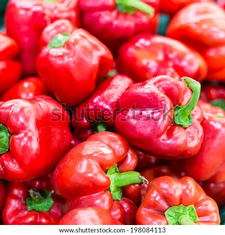 Red sweet pepper on background - stock photo