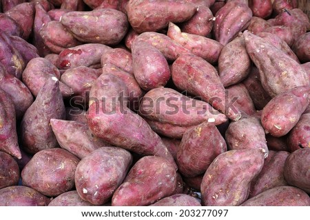 Red sweet potatoes (yams) in bulk at the farmers market - stock photo