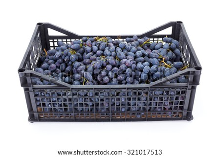 Red table grapes (Vitis) in plastic crate on white - stock photo