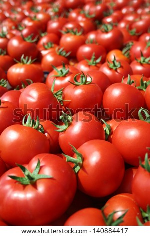 Red tomatoes at open air market  - stock photo