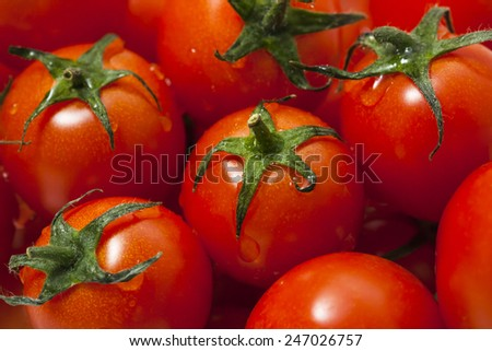red tomatoes background. Group of tomatoes - stock photo
