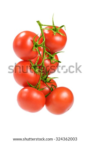 red tomatoes cherry on a branch isolated on white - stock photo