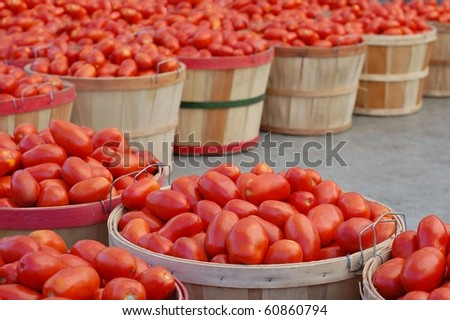 Red Tomatoes in Bushels at a Farmer's Market - stock photo