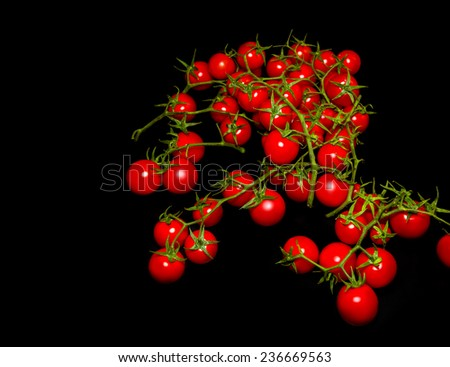 Red tomatoes on a black background  - stock photo