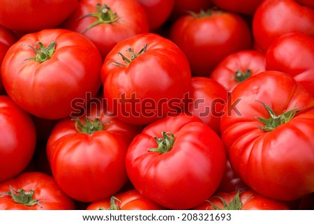 Red tomatoes on the market - stock photo